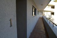 Milkwood 1 - Plett (Central Beach) (1).JPG