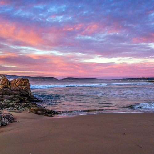Plett Attractions